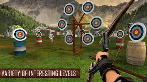 Assassin Archer – Modern Day Robin Hood